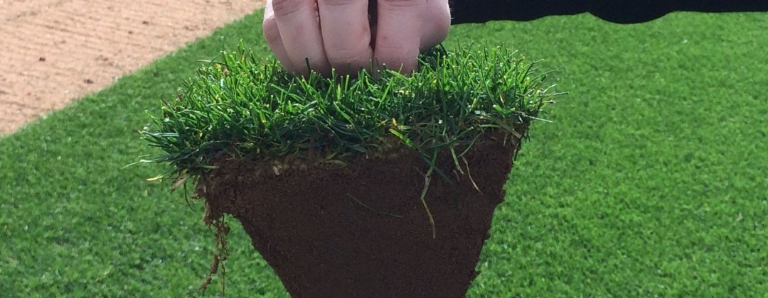 Turf green tepes de c sped natural - Cesped natural ...
