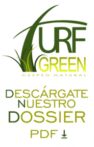 Dossier Turf Green